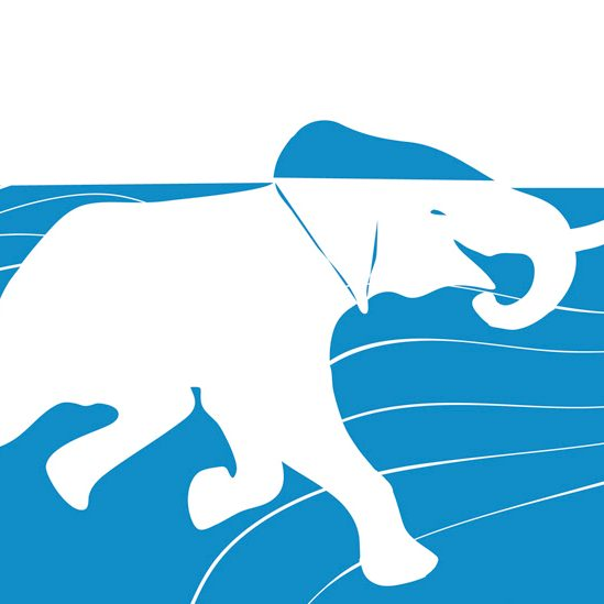 C_slider_elefante3